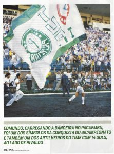 Read more about the article Fotos Palmeiras – SP – II