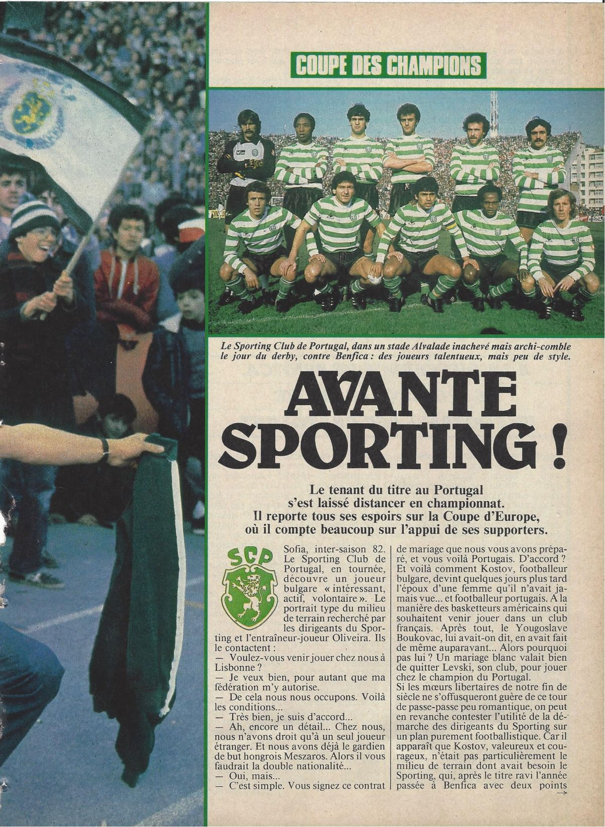 Read more about the article Avante Sporting
